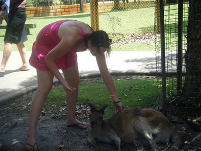Me feeding a kangaroo <img class='img' src='http://www.travellerspoint.com/Emoticons/icon_smile.gif' width='15' height='15' alt=':)' title='' />