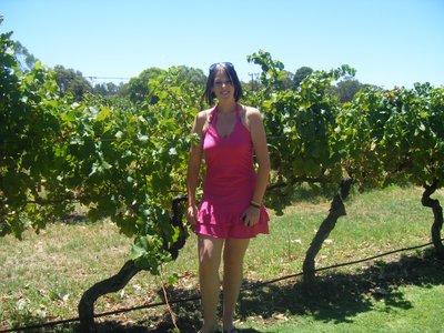 At the Vineyard...