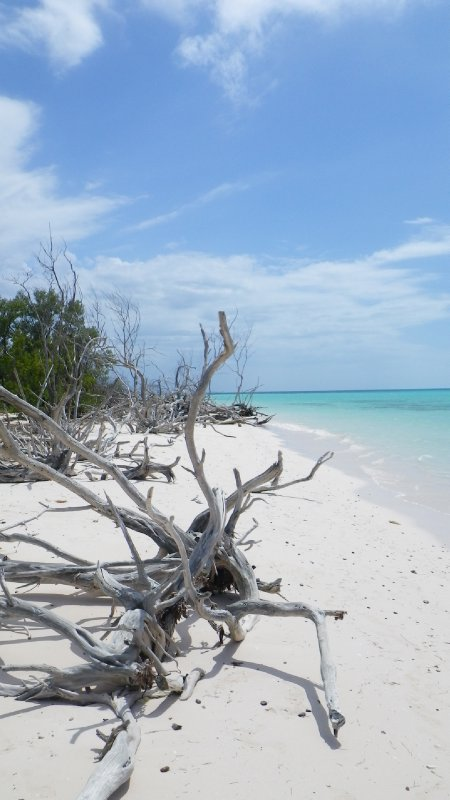 Cayo Jutias