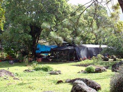 Panama_pics_052.jpg