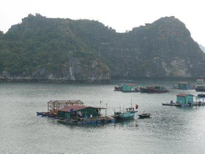 Halong Bay boat trip (2)