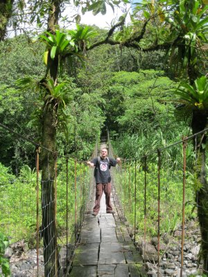 Jay on a bridge in Arenal National Park