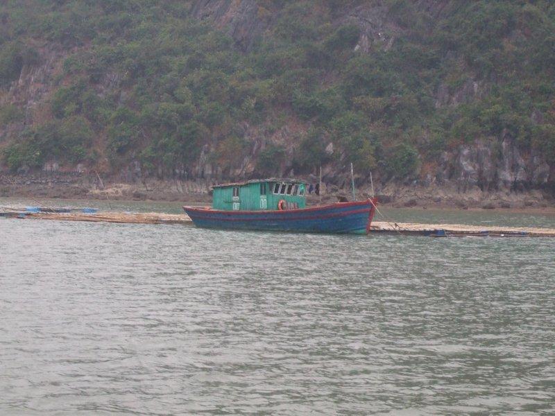 Halong Bay boat trip (7)