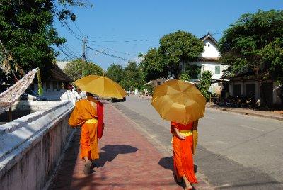 Et vanelig syn i Luang Prabangs gater :-)