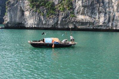 Fisking i Ha Long Bay