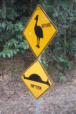 Be ware of Casowarys!!!! En likal helt som har vært litt kreativ med dette advarselskiltet; noen som ser hva han har gjort?? Jepp; fartsdumppa på det bederste skiltet har fått hode og ben og dermed blitt forandret inn til en overkjørt fugl!!!!