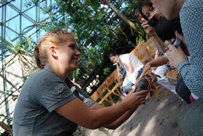 Denne jenta var absolutt ikke redd for reptilene så hun var veldig morsom å ha der! (jeg snakker om hu lille som klapper øgla!)
