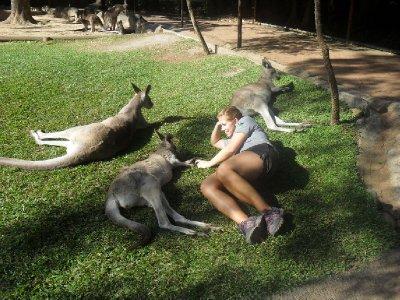 Tid for å henge litt med kenguruene mellom krafttakene......... :-)
