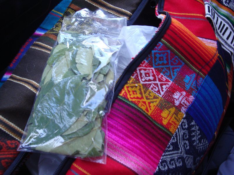 (coca leaves. please note my devine bag from Ecuador)
