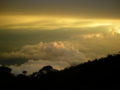 Borneo Sunrise