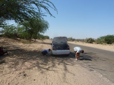 Oh no flat tire! On the road from Johdpur to Jaisalmer