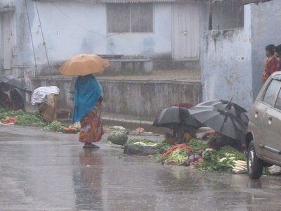 Veggies in the rain