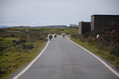 Tráfego nas Highlands