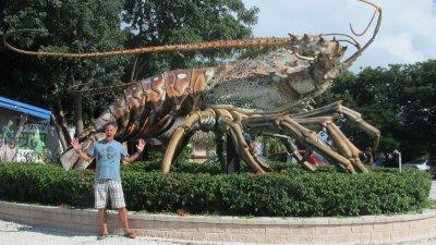 Yup - big lobsters down here.  Everglades, Florida
