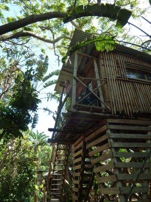 Treehouse aparment.  Umzumbe