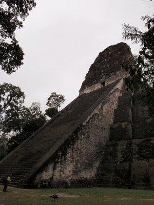 Tikal: Temple