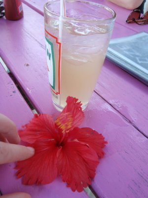 rum and flower