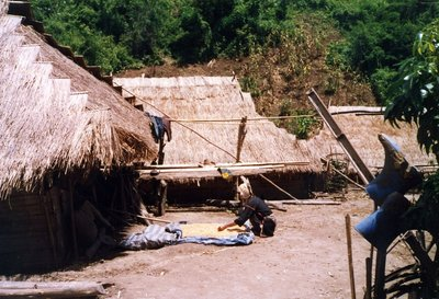 Akha hill tribe woman drying corn in front of her home