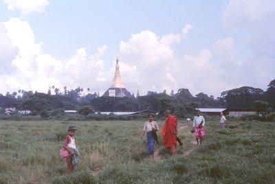 Shwe Dagon from nearby fields