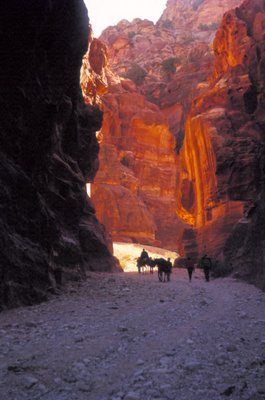 The Way In, Petra