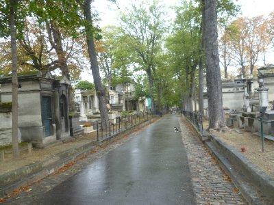 A cat wanders around the Cimetiére de Montmartre