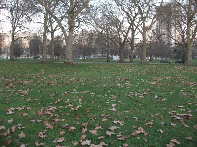 large_londen2_096.jpg