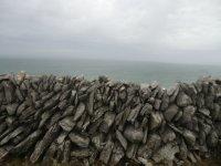 Ierland2_015.jpg