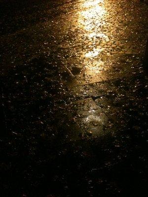 Herbstregen