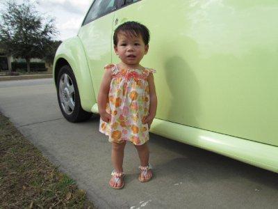 Sun Dresses & Bugs