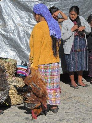 Chicken for sale on the Chichicastenango Sunday market