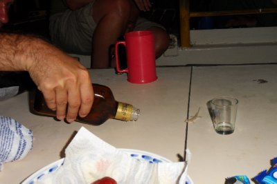 A little gecko visited our dinner table one night. He seemed thirsty, so we gave him some of our rum to try...
