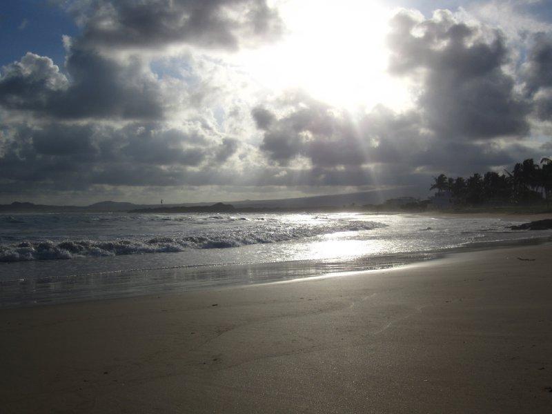 Strand paa Isla Isabela