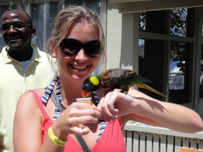 TASH WITH LORIKEET