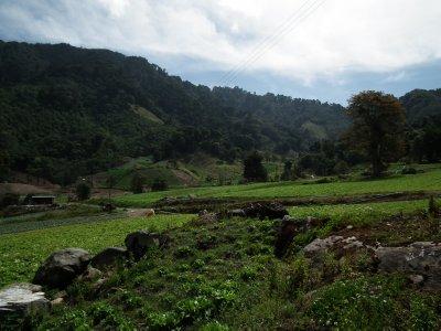 Farmland on the lower hills