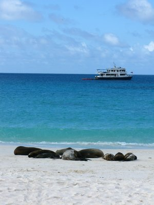 Xavier III - our Galapagos home