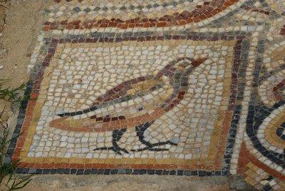 Sbeitla Mosaic