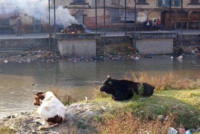 Cremation at the Ghats