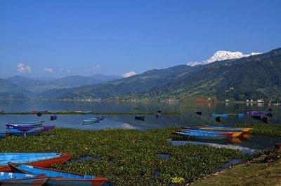 Lake Phewa Tal