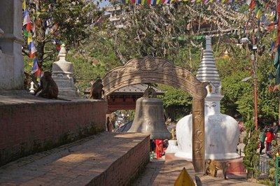 'Monkey Temple'