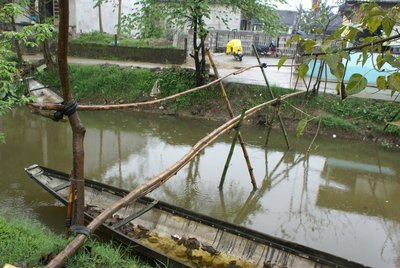 Than Thuy Monkey-Bridge