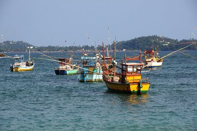 Fishing Boats at Weligama