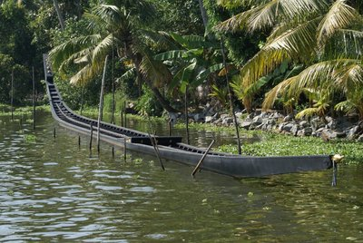 Malabar Backwaters - Eel boat