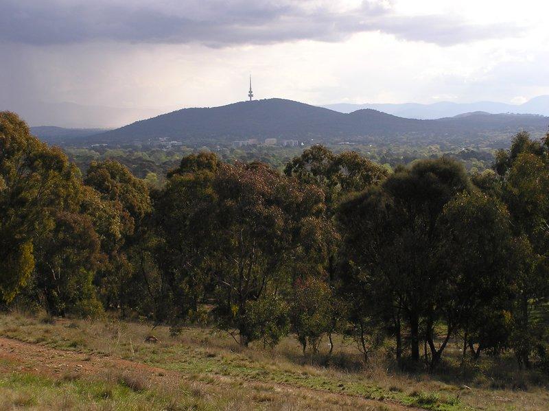 large_Canberra_i..ng__16_.jpg