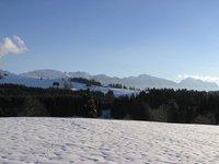 Winter_walks__1_.jpg