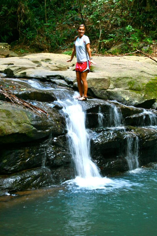 Buderim Waterfalls