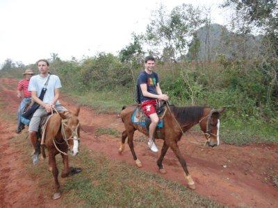 vidar på hesten2