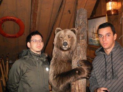Ooo urso lenhador!