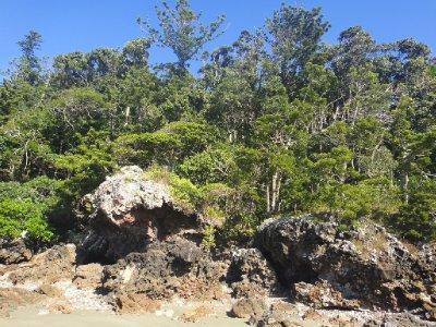Queensland2012_0655.jpg