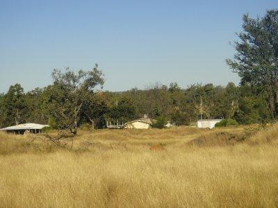 Queensland2012_0701.jpg