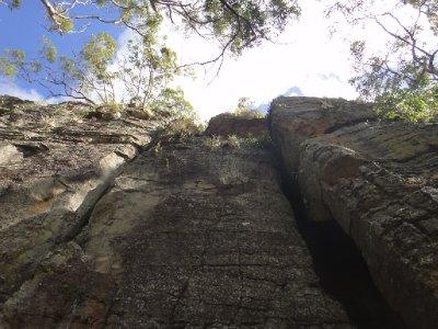 Queensland2012_0753.jpg